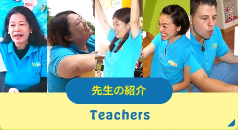 先生の紹介/teachers
